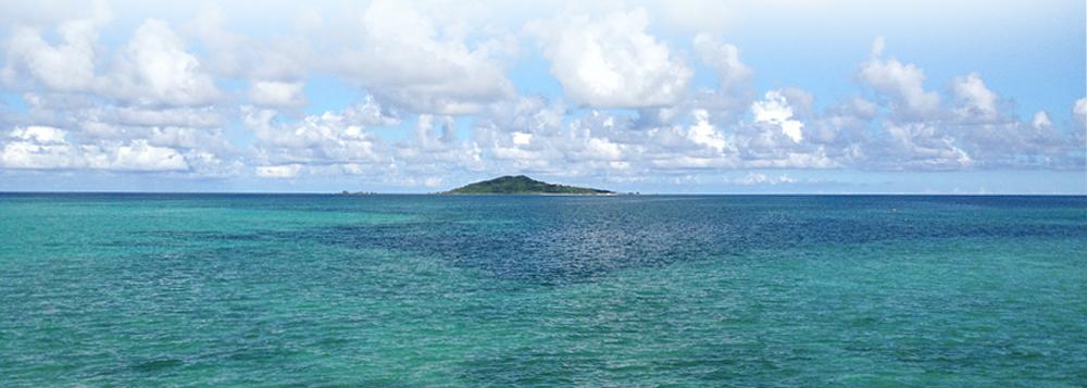 南国の海の写真