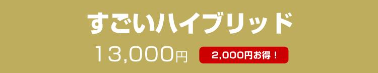 すごいハイブリッド13,000円(2000円お得!)